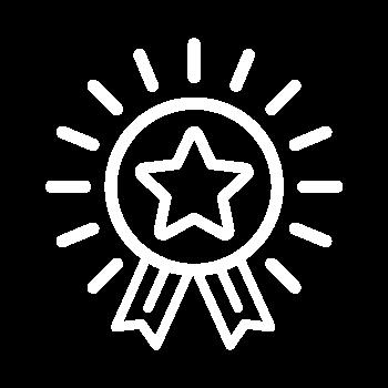 Icon einer Medaillie als Sonne